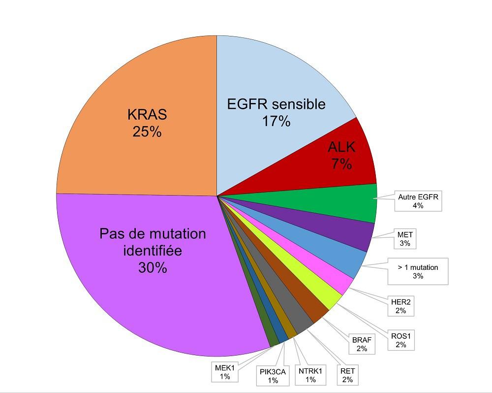 diagnostic cancer du poumon pdf