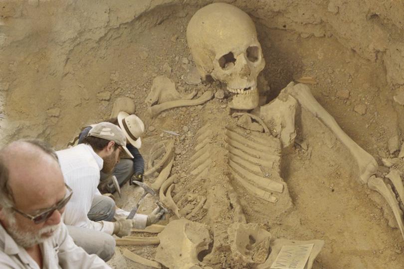 العصر الحجري الحديث في ايران pdf