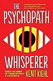 the psychopath test jon ronson pdf download