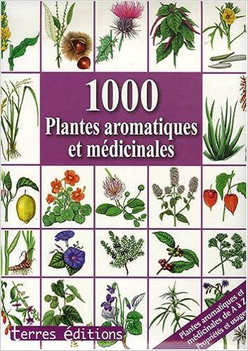 plantes aromatiques et médicinales pdf