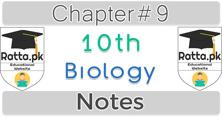 applied clinical pharmacokinetics chapter 8 pdf