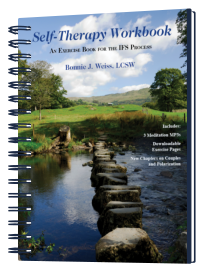 self therapy jay earley pdf